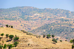 Typical cyprus nature landscape Stock Photography
