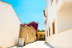 Typical Cyprus village. With Bougainvillea flowers royalty free stock photography