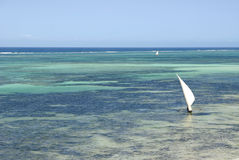 Typical dhow on turquoise lagoon Stock Images