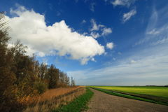 Typical Dutch country landscape in Marken Stock Images