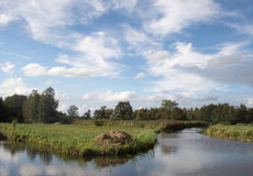Typical Dutch green landscape with cloudy sky stock images