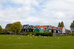 Typical Dutch houses in Marken Stock Photography