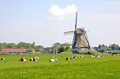 Typical dutch landscape. In summertime in the Netherlands Stock Image