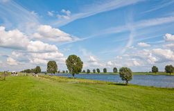 A typical Dutch landscape. With grass, clouds and the river Bergsche Maas Royalty Free Stock Images