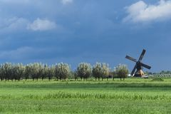 Typical Dutch landscape in Alblasserdam, mill of Bleskensgraaf,  The Netherlands. Space for text. Green meadow and row trees in Alblasserdam, mill of royalty free stock image