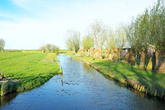 Typical dutch landscape in the countryside from Netherlands Royalty Free Stock Images