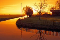 Typical dutch landscape in the countryside from the Netherlands. At sunset Royalty Free Stock Photos