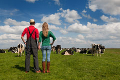 Typical Dutch landscape with farmer Royalty Free Stock Photography