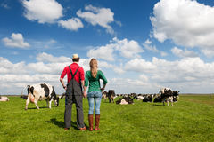 Typical Dutch landscape with farmers couple Royalty Free Stock Image