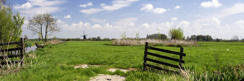 Typical dutch landscape with meadows, wooden fence, mill, green grass, blue sky, white clouds Royalty Free Stock Photo