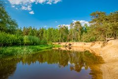 Dutch landscape of `t Lutterzand near the German border The Netherlands. Typical Dutch landscape of `t Lutterzand, a forest area near the German border and a Royalty Free Stock Images