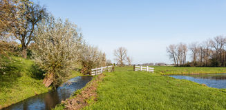 Typical Dutch polder landscape in autumn Royalty Free Stock Photos