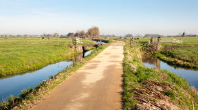 Typical Dutch polder landscape Stock Image