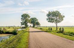 Typical Dutch polder landscape in the Dutch region Alblasserwaar. D, located in the National Landscape called The Green Heart in the province of South Holland stock photo