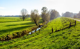 Typical Dutch polder landscape in the fall season Stock Image