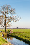 Typical Dutch polder landscape with a windmill Stock Images