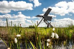 Dutch windmill in the landscape of the Dutch polder with marsh p Royalty Free Stock Photography