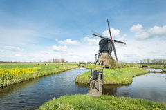 Typical Dutch windmill in springtime Stock Image