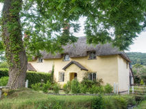 Typical English country thatched cottage. Stock Images