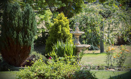 Typical English garden Royalty Free Stock Images