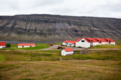 Typical Farm House at Icelandic Fjord Coast Royalty Free Stock Photos