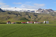 Typical farm in Iceland Royalty Free Stock Image