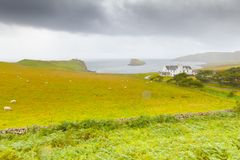 A typical farm with sheep breeding in the island of Skye stock images