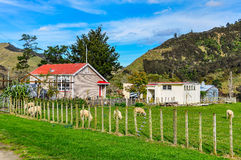 Typical farm in Whanganui National Park, New Zealand Royalty Free Stock Images