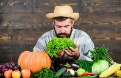 Typical farmer guy. Buy vegetables local farm. Farm market harvest festival. Man mature bearded farmer hold vegetables stock image