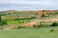 Castile field Stock Images
