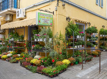 The typical flower shop at Aegina island. Royalty Free Stock Photo