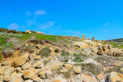 Typical Gallura rocks under a clear sky Royalty Free Stock Photos