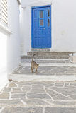 Typical greek alley with a door, cat and steps Royalty Free Stock Photos