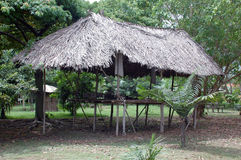 Typical habitation of the native amazon indian Royalty Free Stock Images