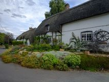 Typical Hampshire country cottage - half timbered and thatched - with pretty front garden in the village of Easton near Winchester royalty free stock images
