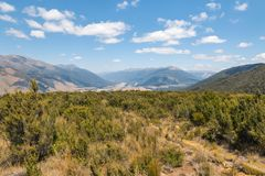 Typical high country in Marlborough region, New Zealand stock image