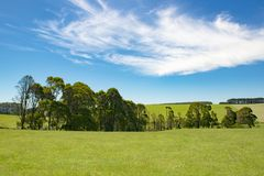 Typical hinterland Great Ocean Road, Australia royalty free stock photography