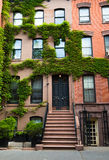 Typical homes in New York Royalty Free Stock Photo