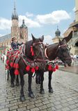 Typical horse-drawn carriage - Krakow - Poland Royalty Free Stock Image