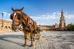 Typical horse drawn carriage in Plaza de Espana. Royalty Free Stock Image