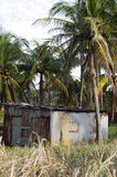 Typical house corn island nicaragua Stock Photo