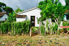 Typical house in the cuban Royalty Free Stock Photos