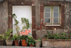 Typical house on madeira Royalty Free Stock Photo