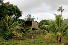 Typical house in the nicaraguan jungle, Nicaragua. Central America Stock Images