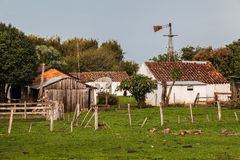 Typical House Rio Grande do Sul Stock Images
