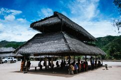 Typical houses in the central Peruvian jungle royalty free stock images