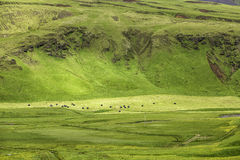 Typical Icelandic mountain landscapes Royalty Free Stock Image