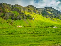 Typical icelandic summer landscape. With mountain, waterfalls, green field, cows and barn Royalty Free Stock Photo