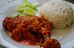 Typical Indonesian Dish: Nasi Ayam Plecing Chicken with rice and special sauce close-up.  stock photos