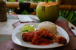 Typical Indonesian Dish: Nasi Ayam Plecing Chicken with rice an. D special sauce and young coconut stock images
